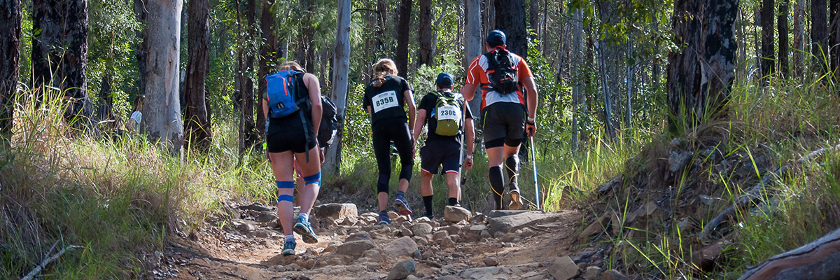 Four people walking through the Australian bush in hiking attire