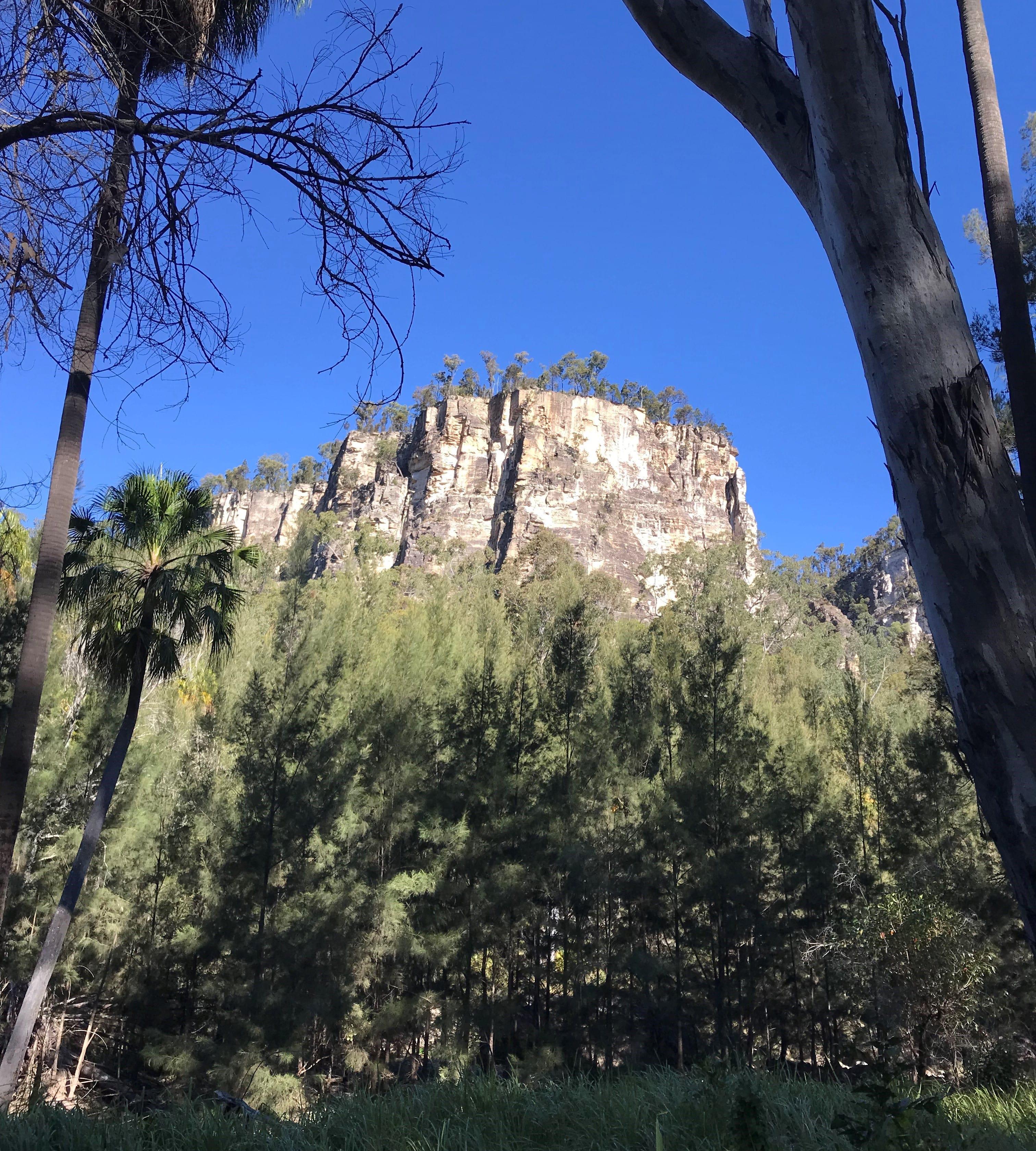 large rock formation in outback queensland carnarvon gorge national park australia