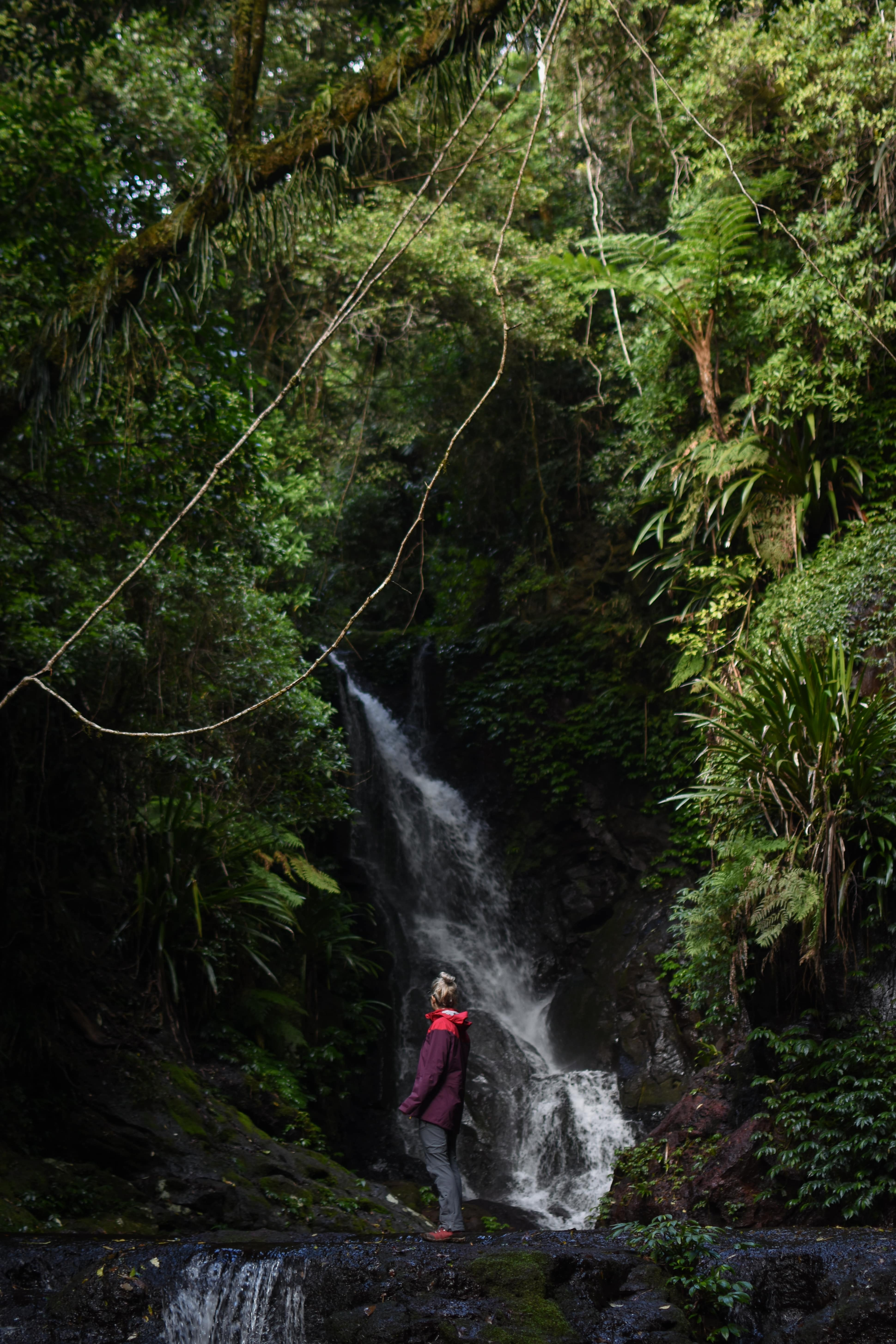 Girl standing in front of Elabana Falls in Lamington National Park in the Gold Coast Hinterland