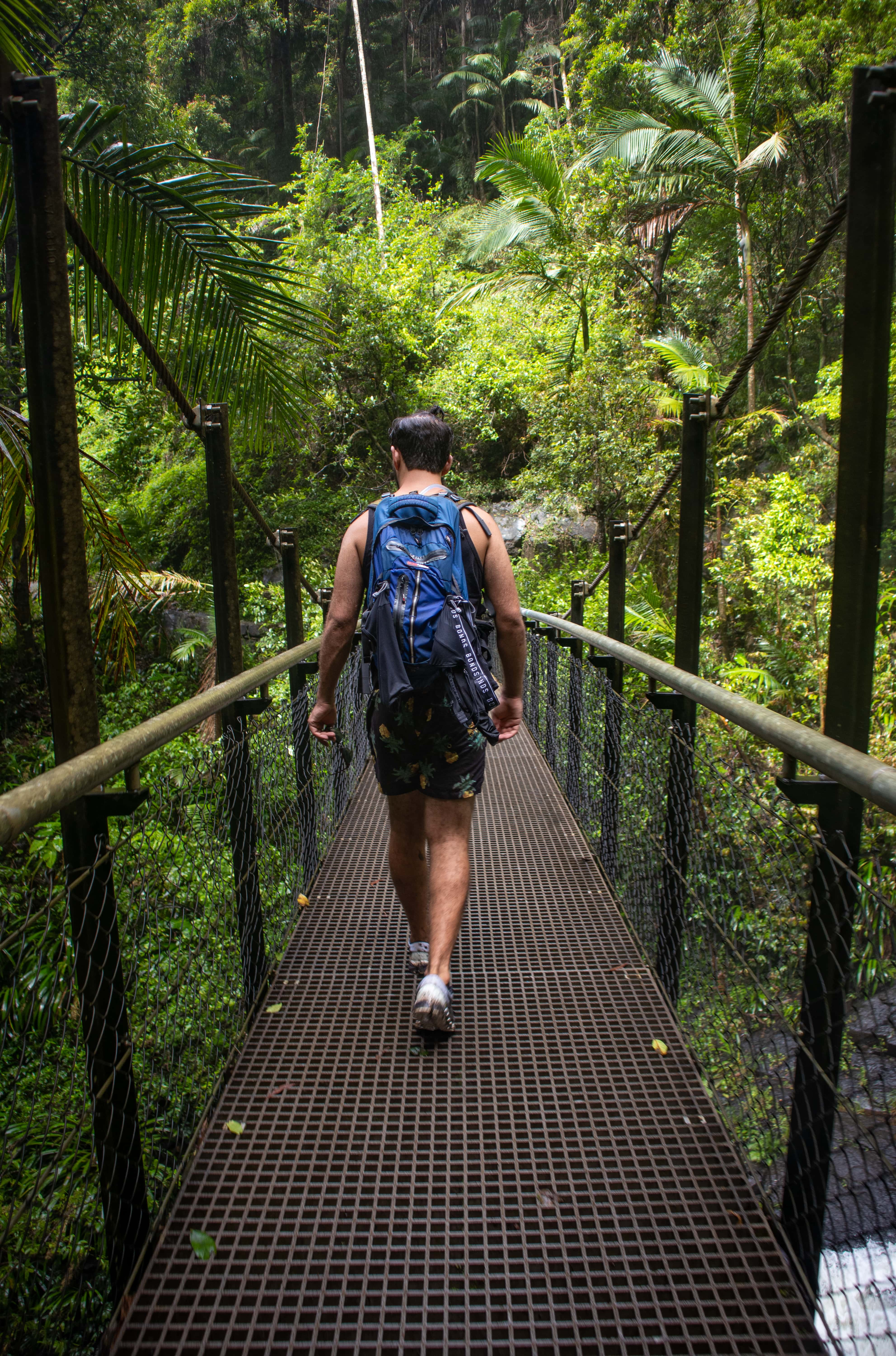 Man with blue backpack walking over a bridge in the rainforest