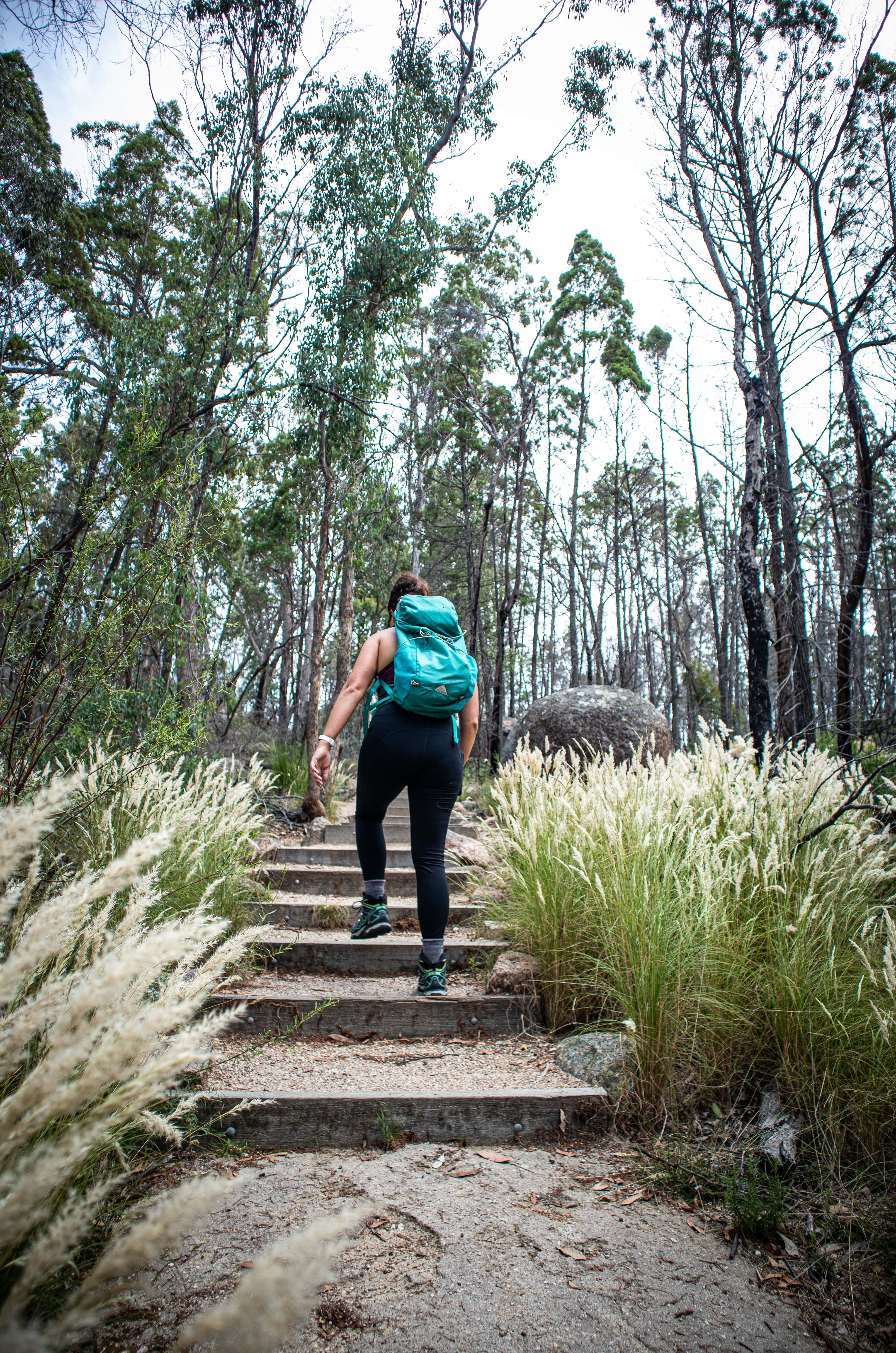 Girl wearing a backpack walking up stairs in Australian bushland