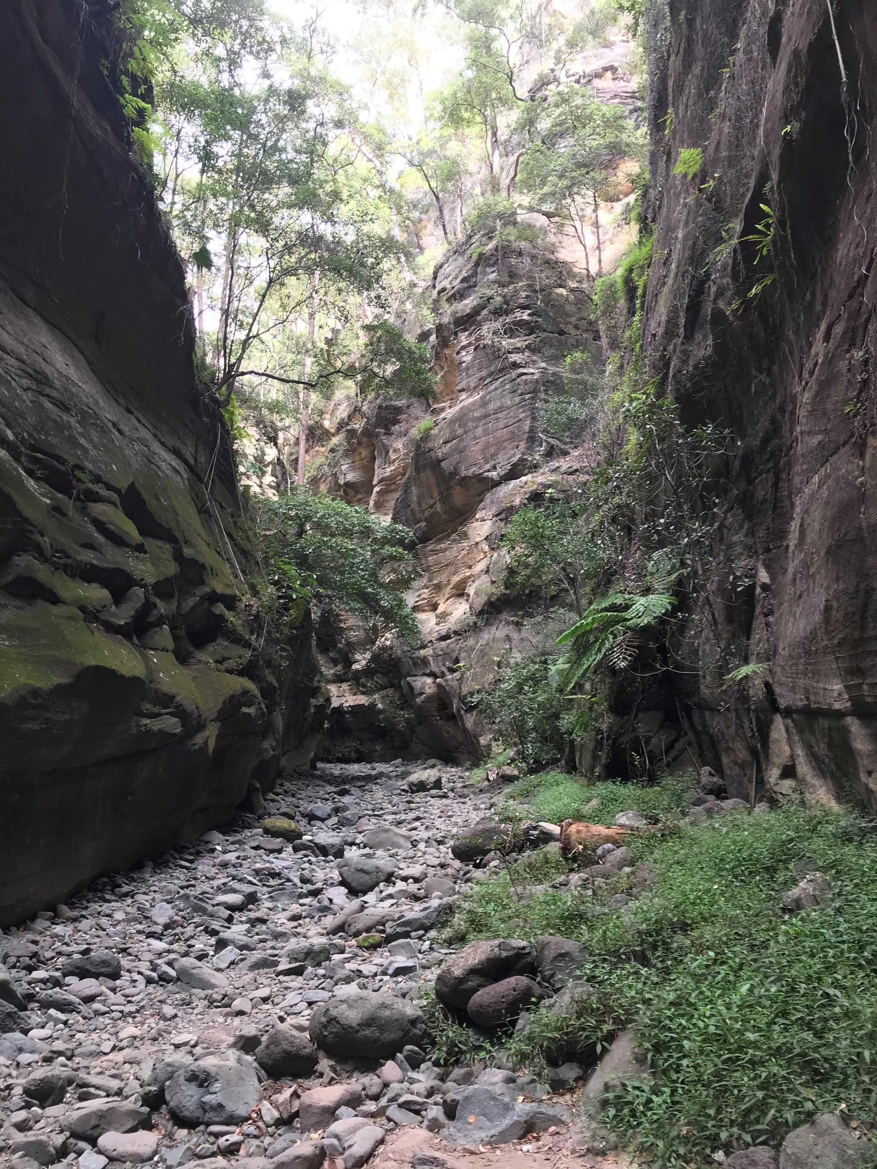 rock formations in carnarvon gorge national park in outback queensland australia