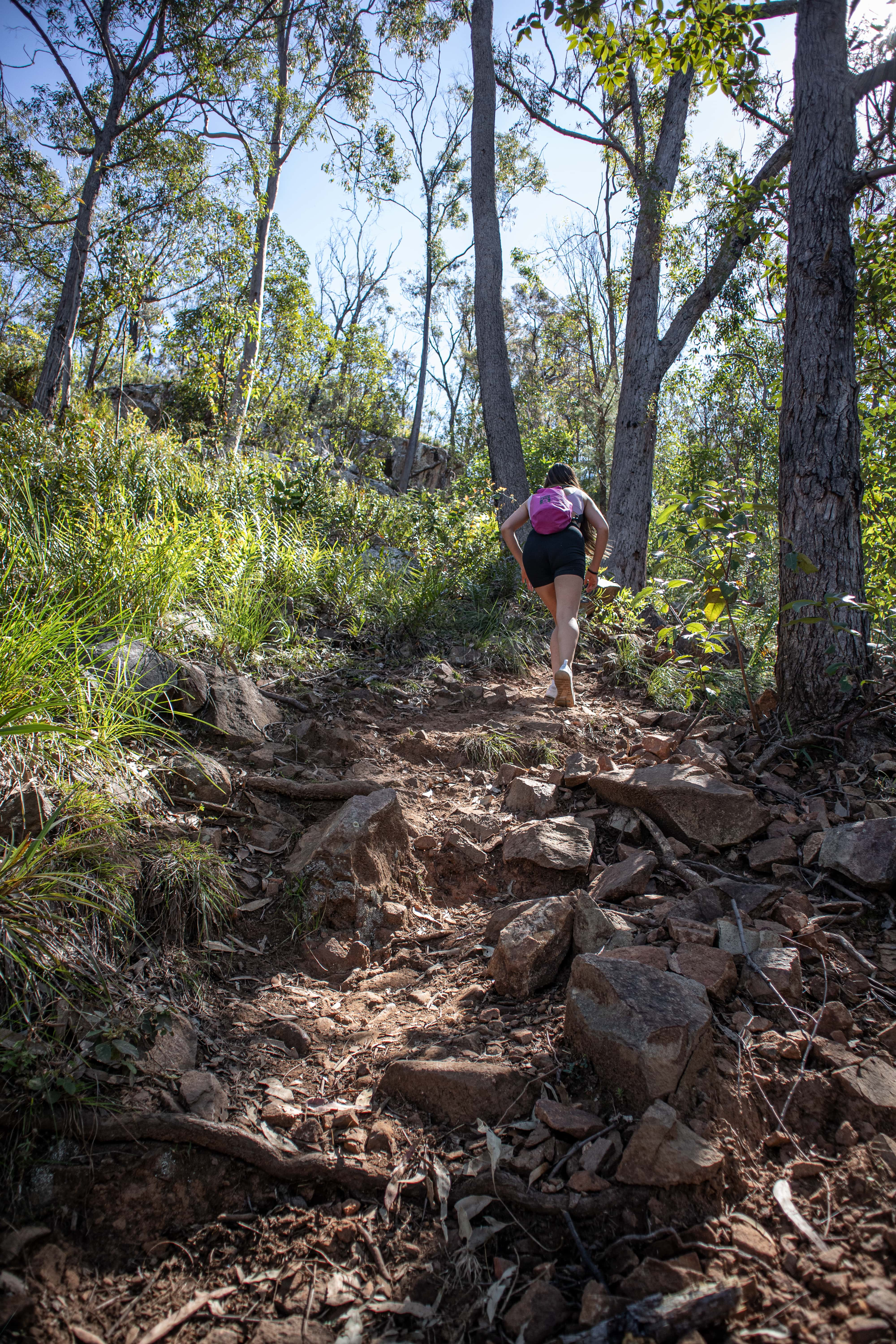 girl walking up a steep incline to get to the peak of mount greville in the scenic rim in queensland australia