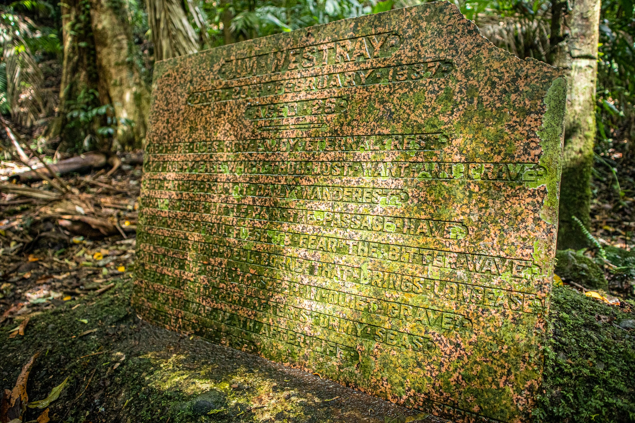 Westray's Grave in Lamington National Park nearby the hike to Stinson Wreck
